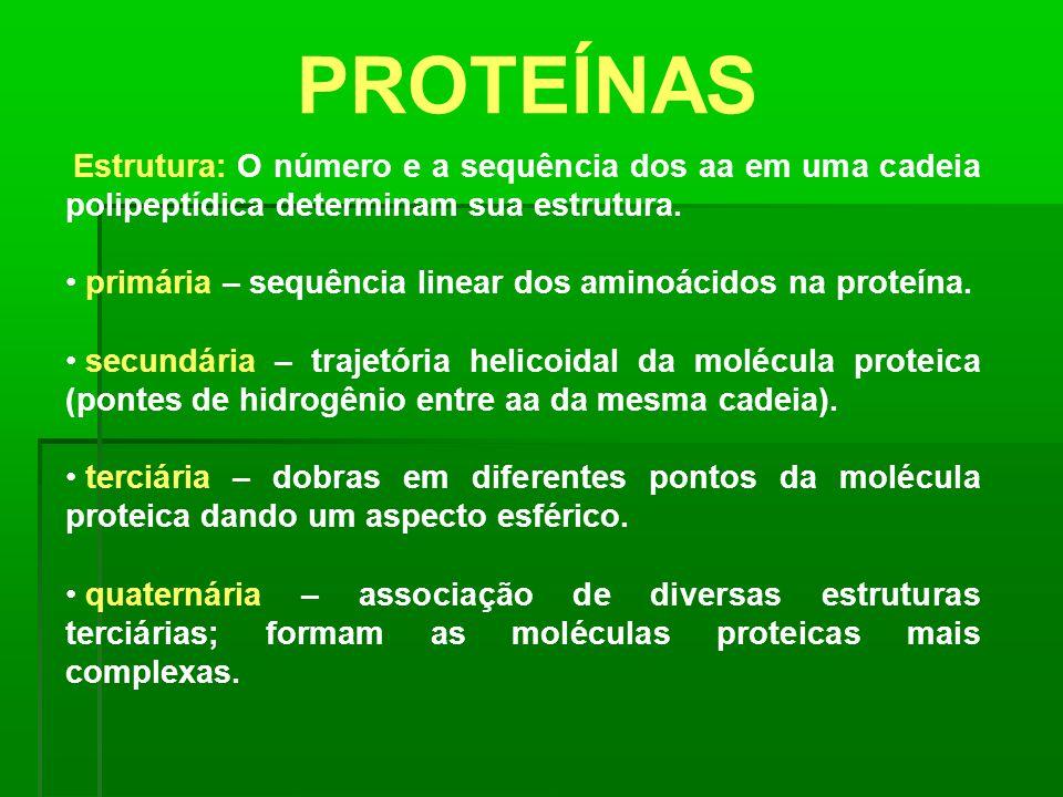 PROTEÍNAS primária – sequência linear dos aminoácidos na proteína.