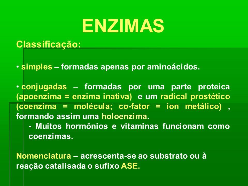 ENZIMAS Classificação: simples – formadas apenas por aminoácidos.