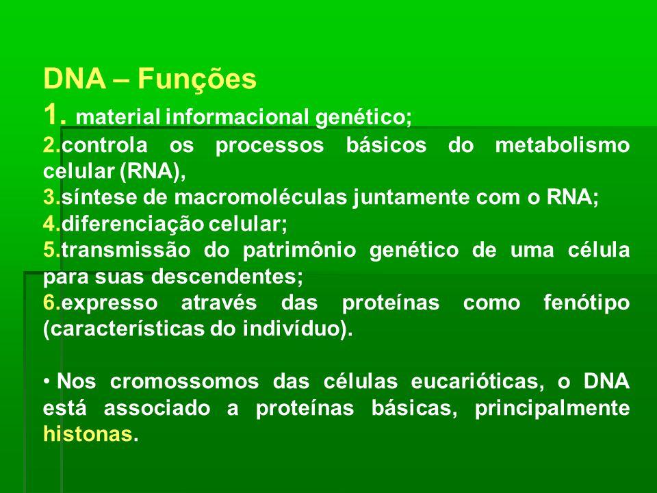 material informacional genético;