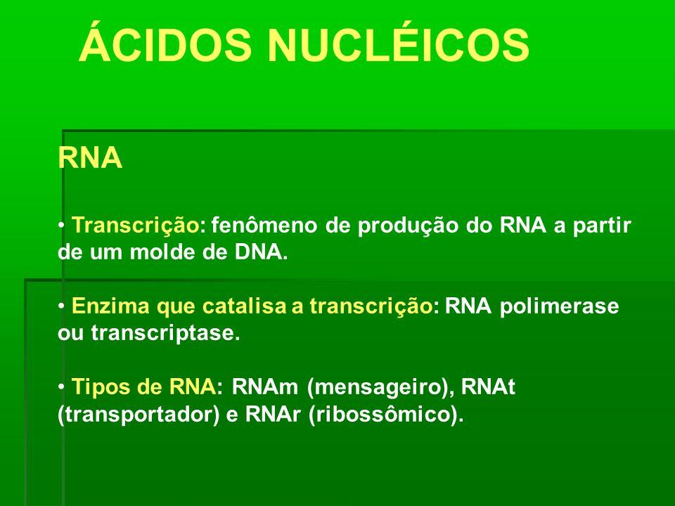 ÁCIDOS NUCLÉICOS RNA. Transcrição: fenômeno de produção do RNA a partir de um molde de DNA.