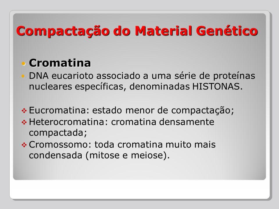 Compactação do Material Genético