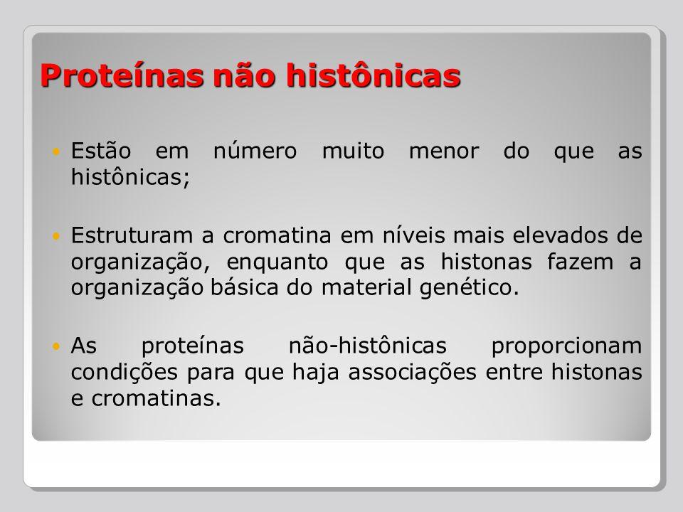 Proteínas não histônicas