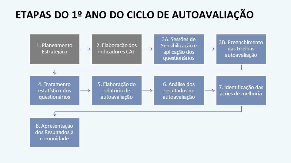 ETAPAS DO 1º ANO DO CICLO DE AUTOAVALIAÇÃO