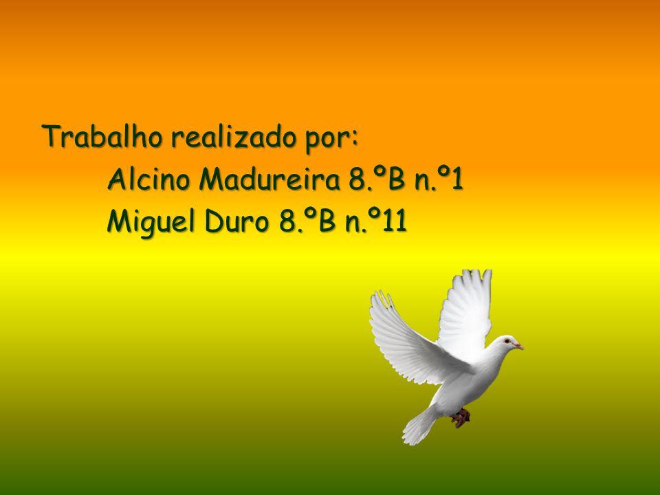 Trabalho realizado por: Alcino Madureira 8. ºB n. º1 Miguel Duro 8