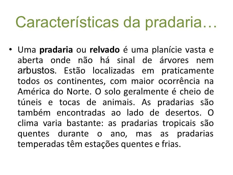 Características da pradaria…