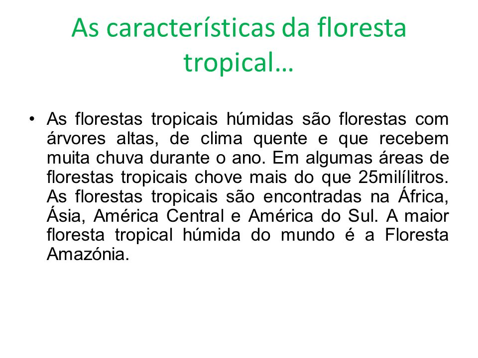 As características da floresta tropical…
