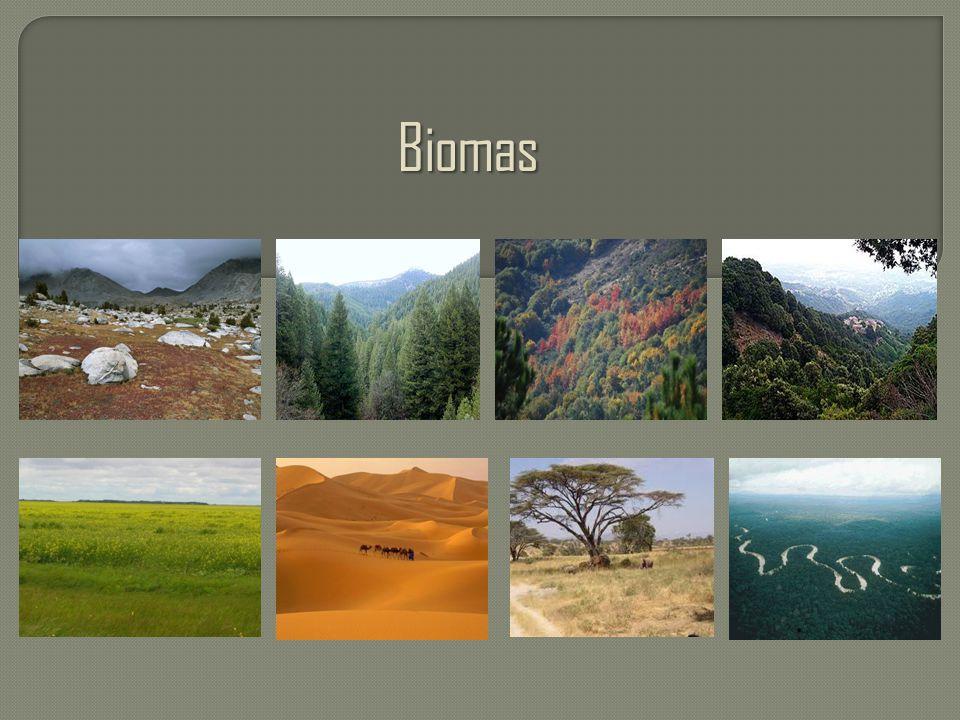 Biomas .