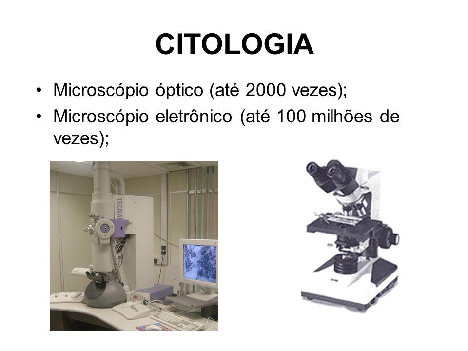 CITOLOGIA Microscópio óptico (até 2000 vezes);