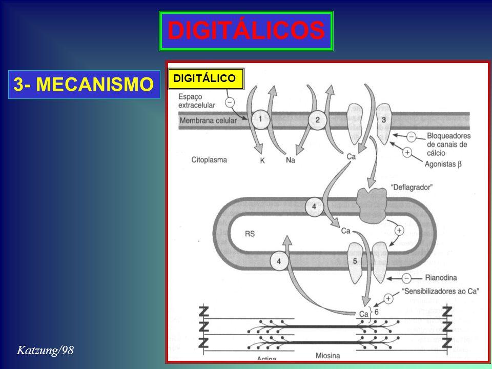 DIGITÁLICOS 3- MECANISMO DIGITÁLICO Katzung/98