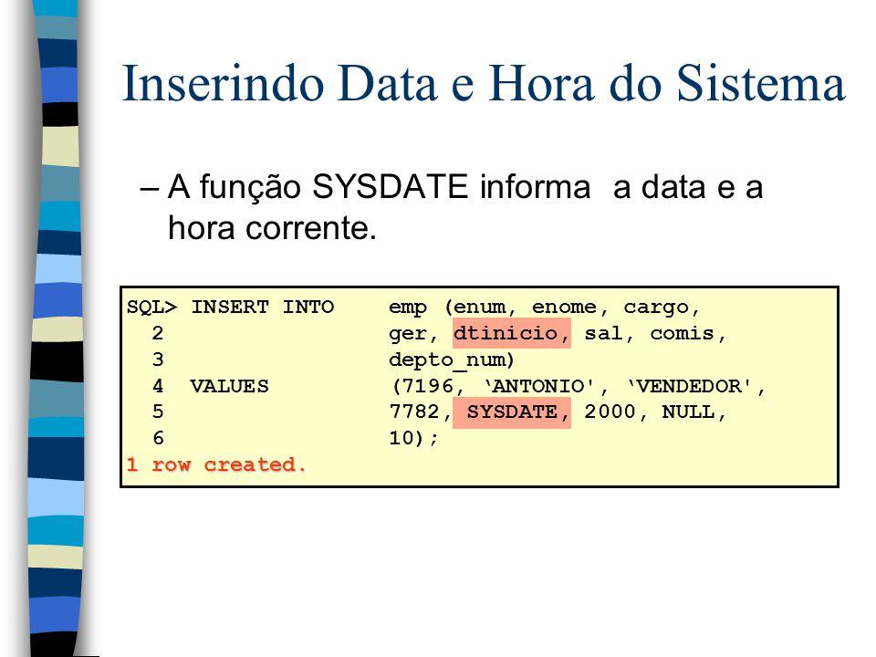 Inserindo Data e Hora do Sistema