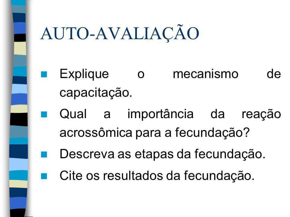 AUTO-AVALIAÇÃO Explique o mecanismo de capacitação.