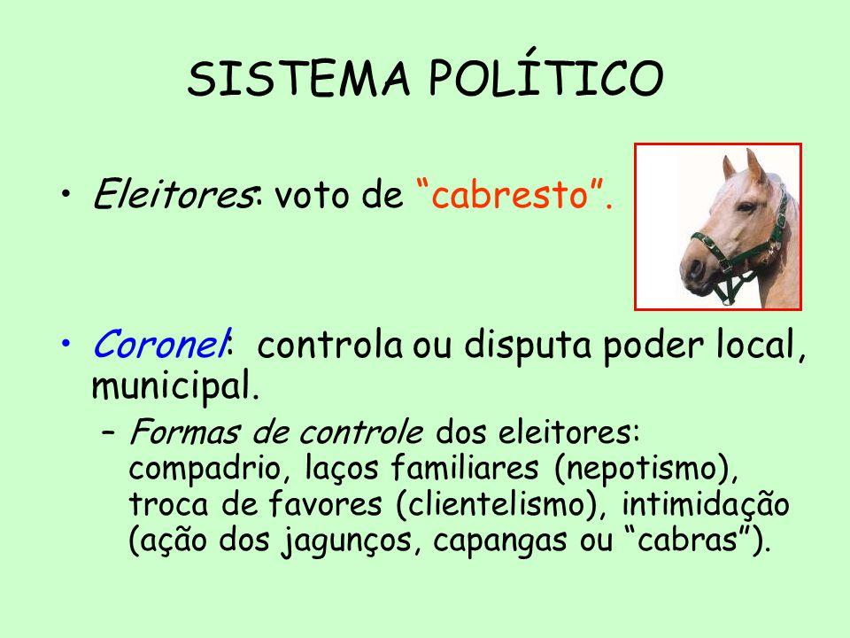 SISTEMA POLÍTICO Eleitores: voto de cabresto .