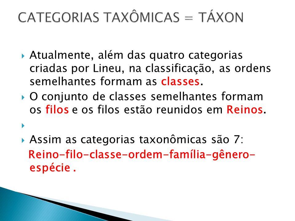 CATEGORIAS TAXÔMICAS = TÁXON