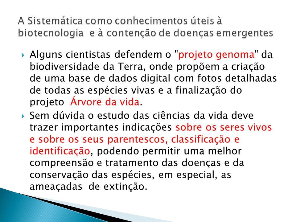 A Sistemática como conhecimentos úteis à biotecnologia e à contenção de doenças emergentes