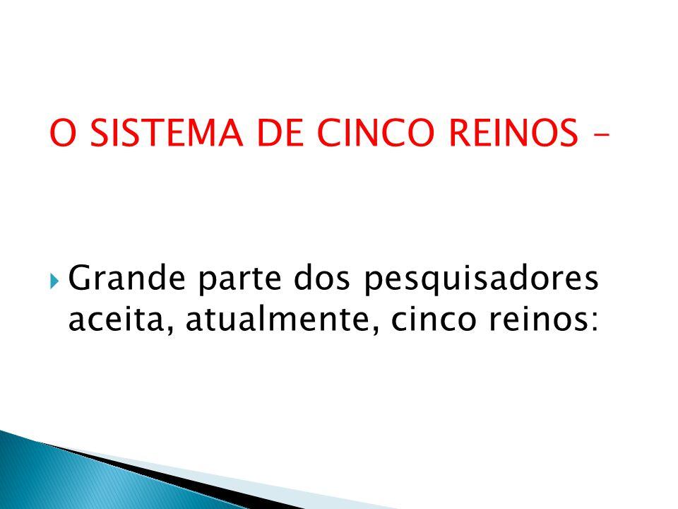 O SISTEMA DE CINCO REINOS –
