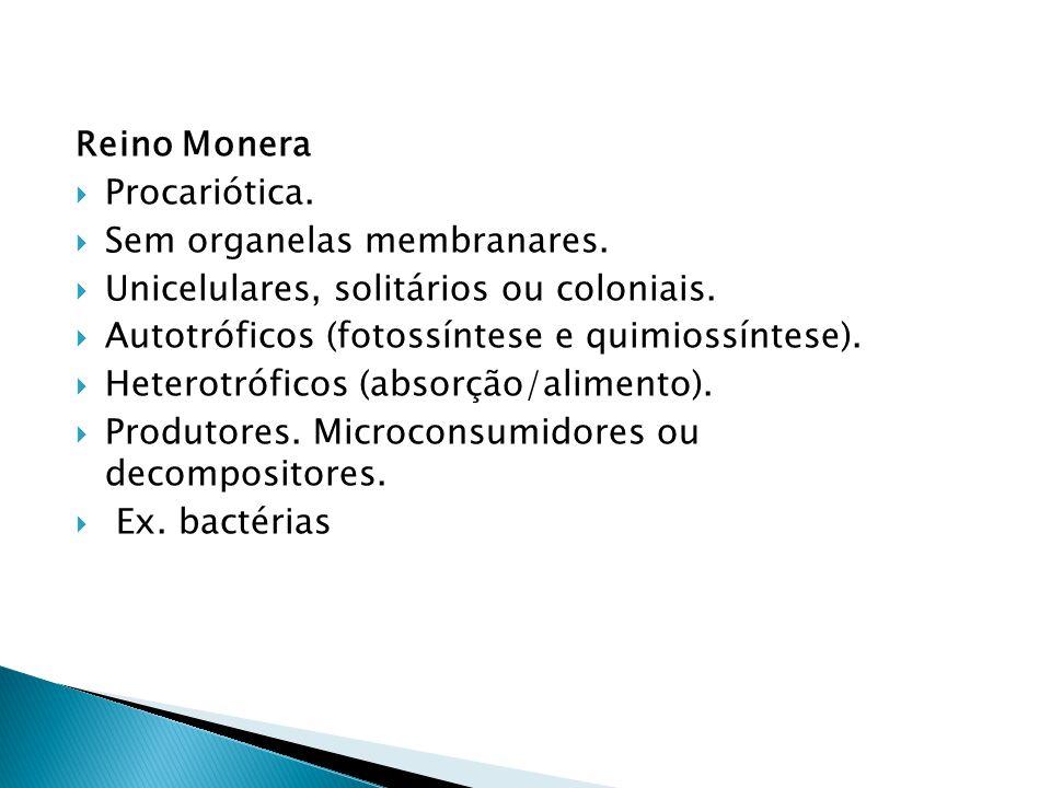 Reino Monera Procariótica. Sem organelas membranares. Unicelulares, solitários ou coloniais. Autotróficos (fotossíntese e quimiossíntese).