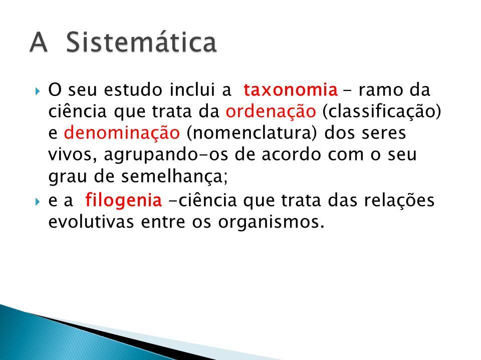 A Sistemática
