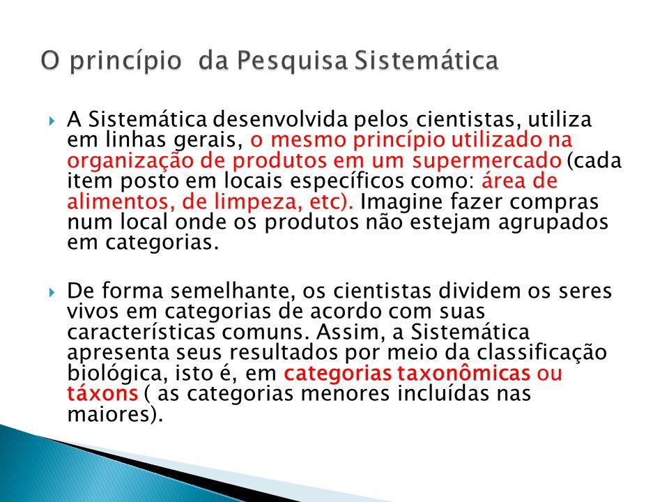 O princípio da Pesquisa Sistemática