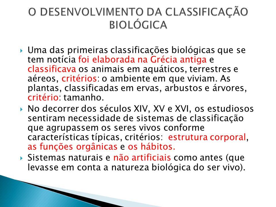 O DESENVOLVIMENTO DA CLASSIFICAÇÃO BIOLÓGICA