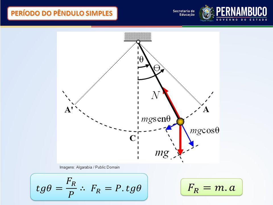 PERÍODO DO PÊNDULO SIMPLES