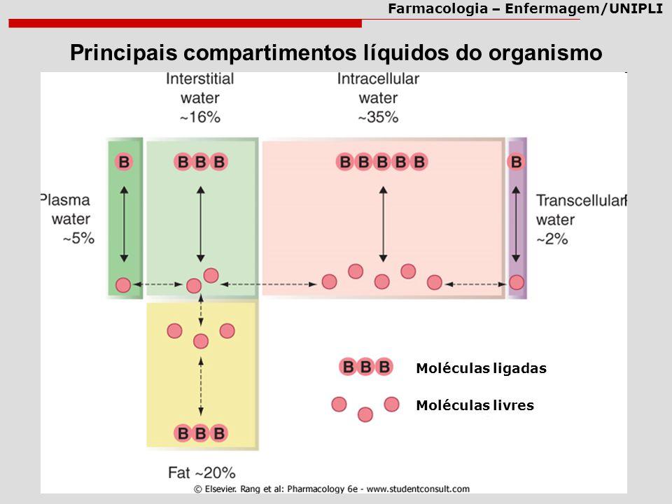 Principais compartimentos líquidos do organismo