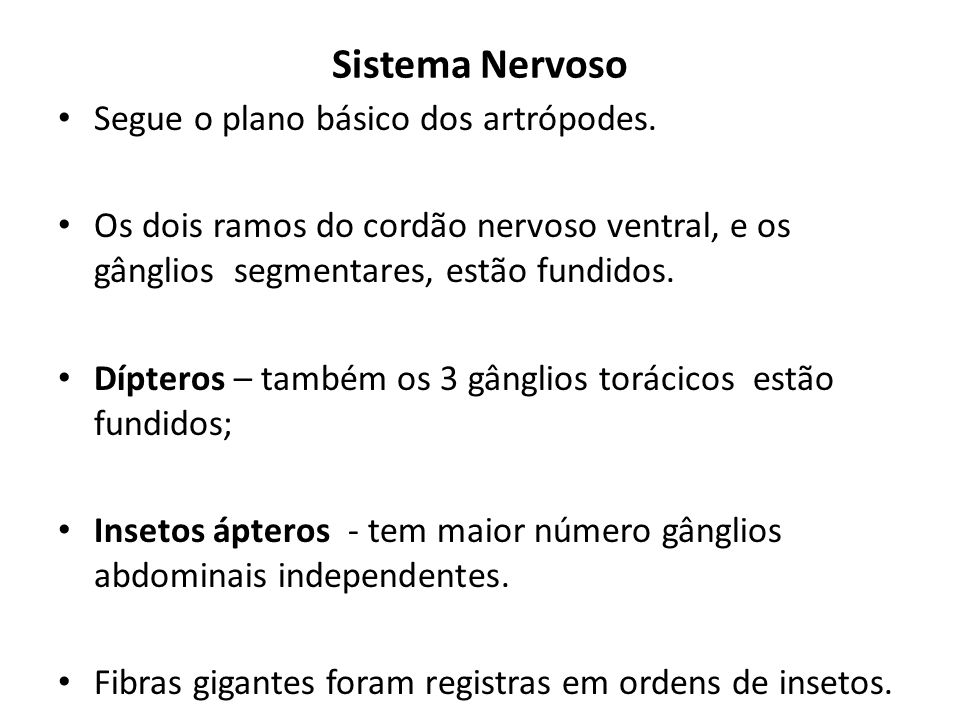 Sistema Nervoso Segue o plano básico dos artrópodes.
