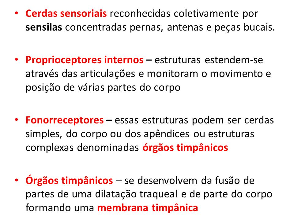 Cerdas sensoriais reconhecidas coletivamente por sensilas concentradas pernas, antenas e peças bucais.