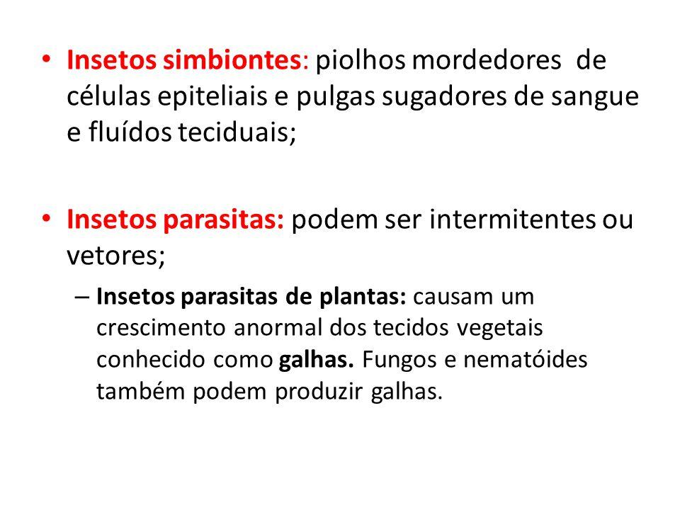 Insetos parasitas: podem ser intermitentes ou vetores;