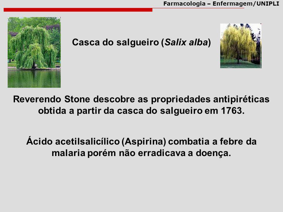 Casca do salgueiro (Salix alba)