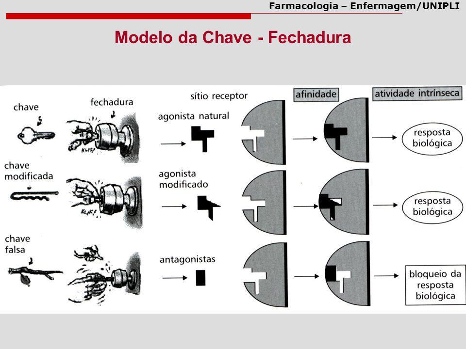 Modelo da Chave - Fechadura