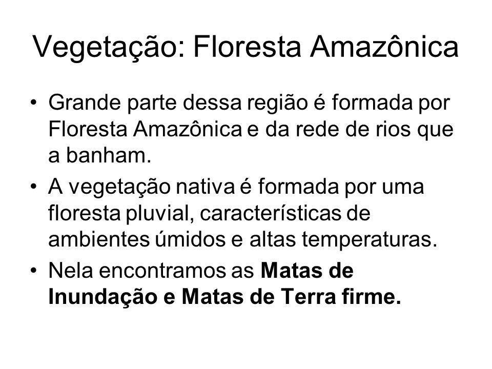 Vegetação: Floresta Amazônica