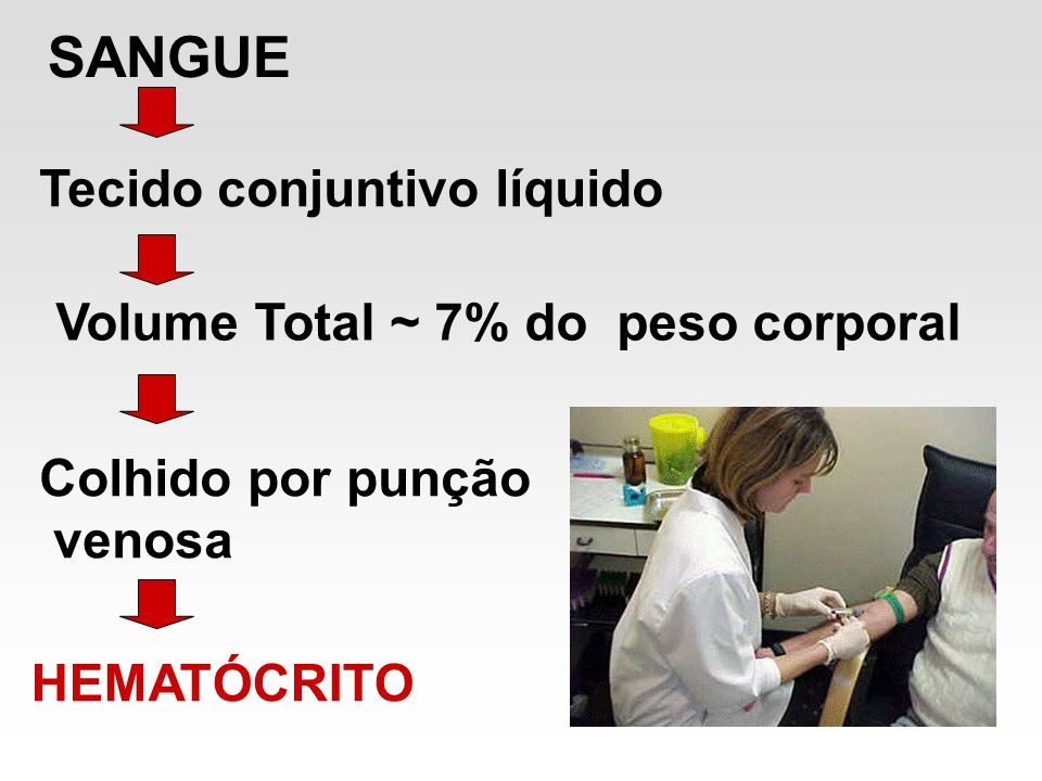 SANGUE Tecido conjuntivo líquido Volume Total ~ 7% do peso corporal