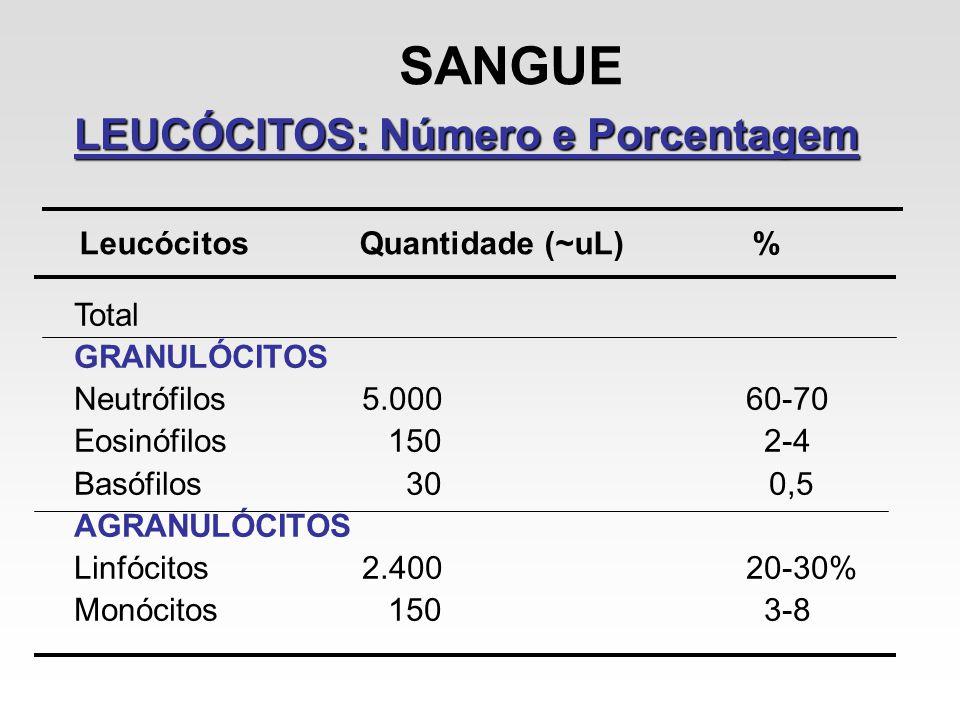 SANGUE LEUCÓCITOS: Número e Porcentagem Leucócitos Quantidade (~uL) %