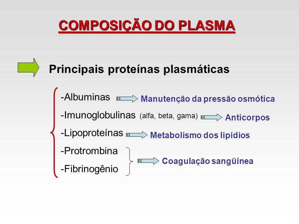 COMPOSIÇÃO DO PLASMA Principais proteínas plasmáticas Albuminas