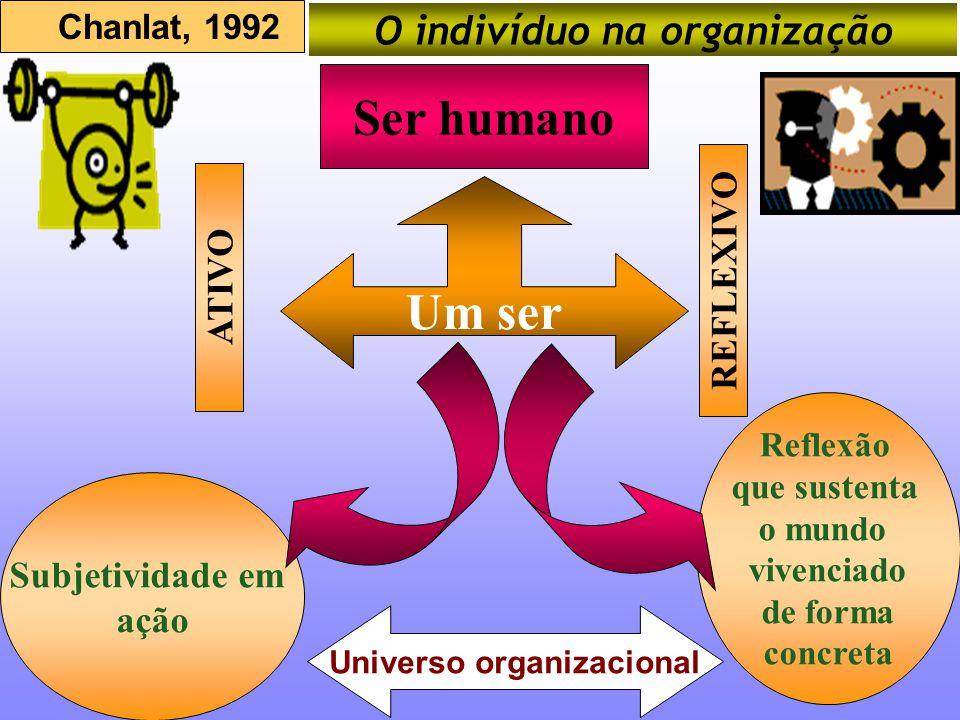 O indivíduo na organização Universo organizacional