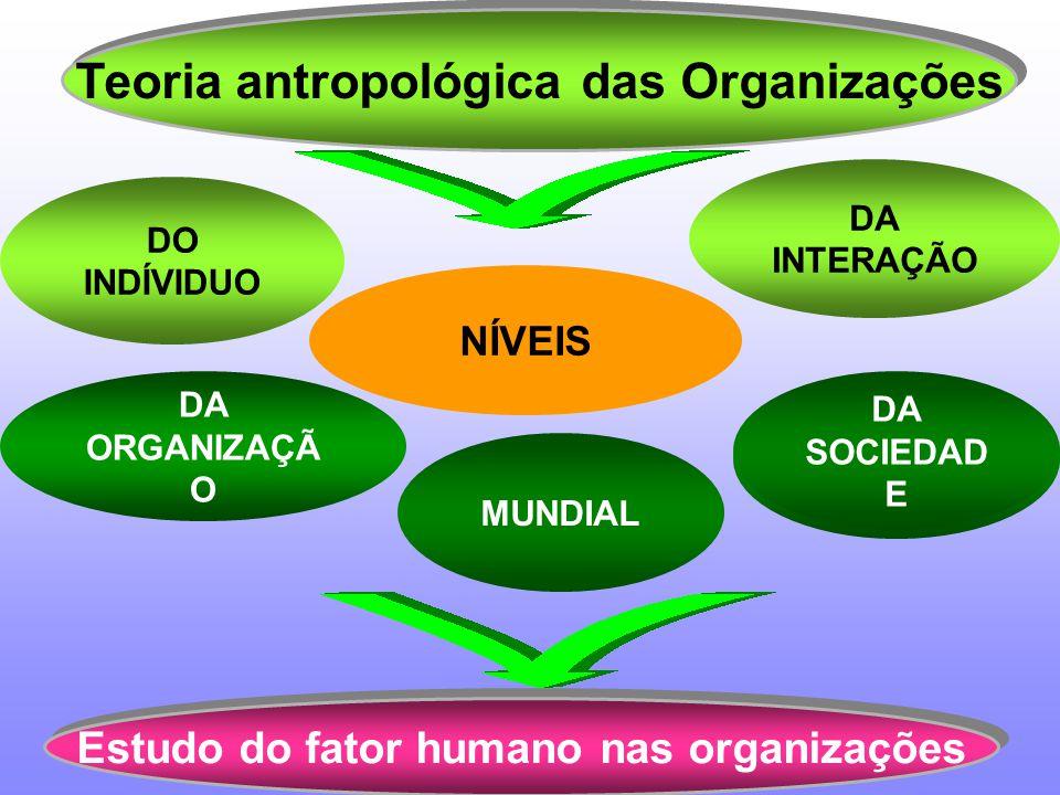Teoria antropológica das Organizações
