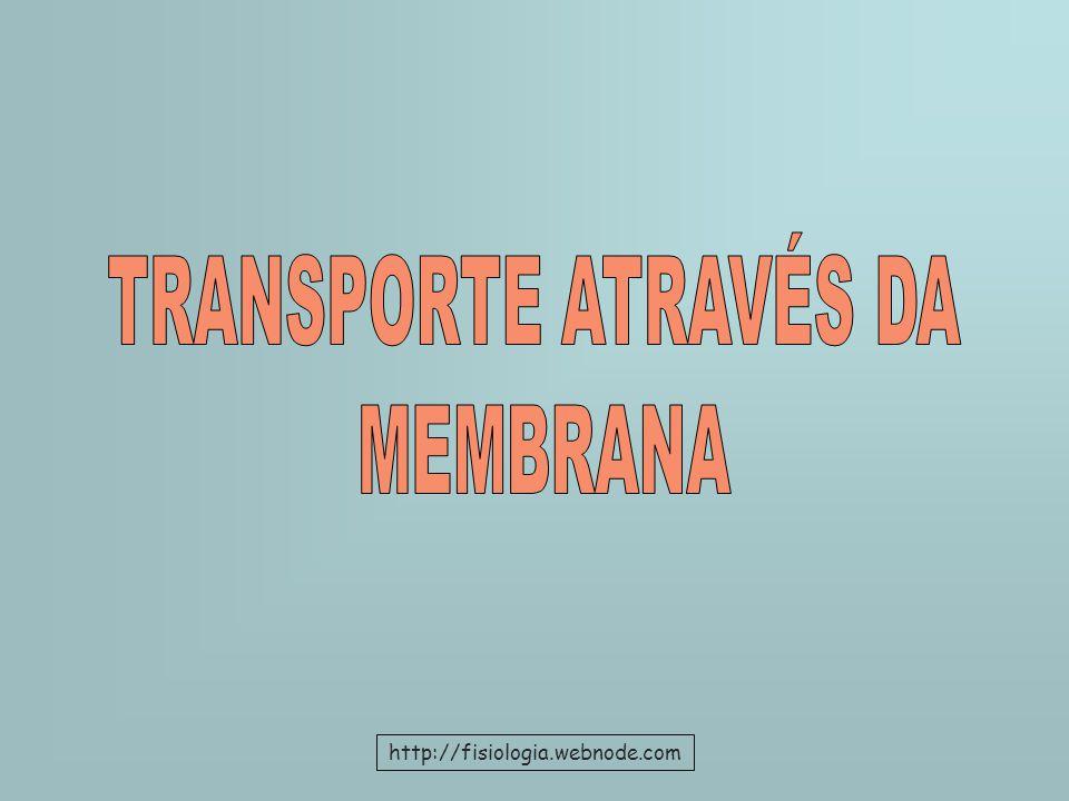 TRANSPORTE ATRAVÉS DA MEMBRANA http://fisiologia.webnode.com