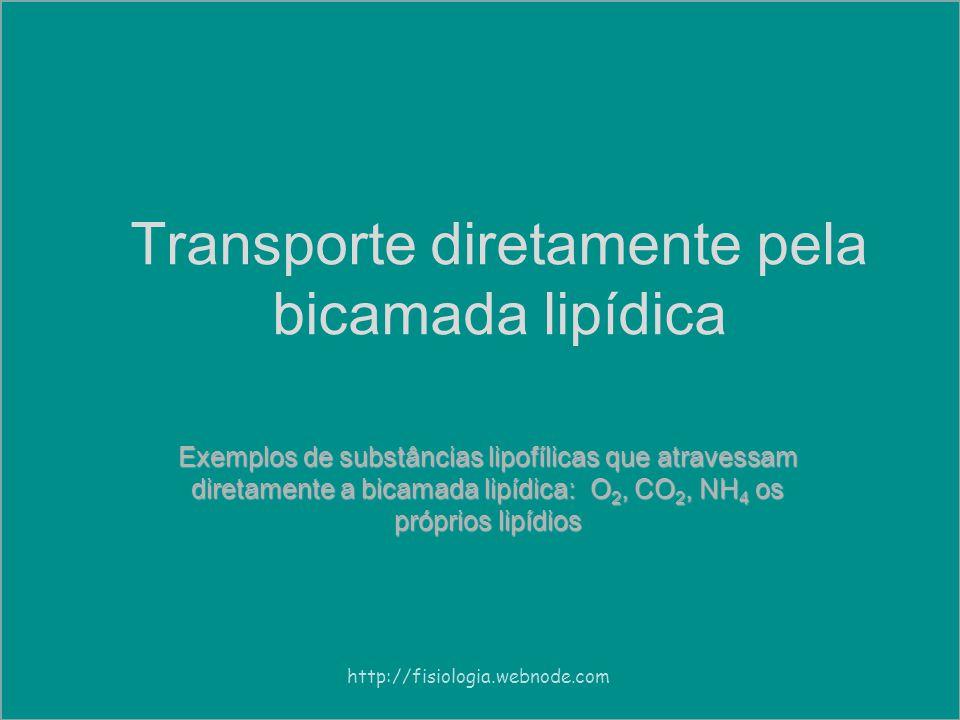 Transporte diretamente pela bicamada lipídica