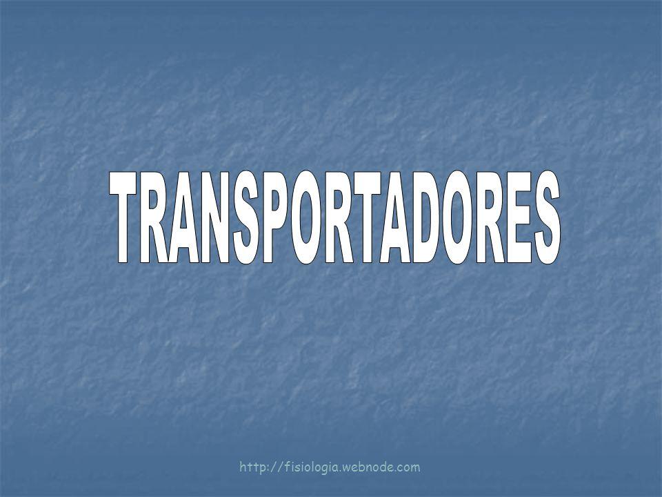 TRANSPORTADORES http://fisiologia.webnode.com