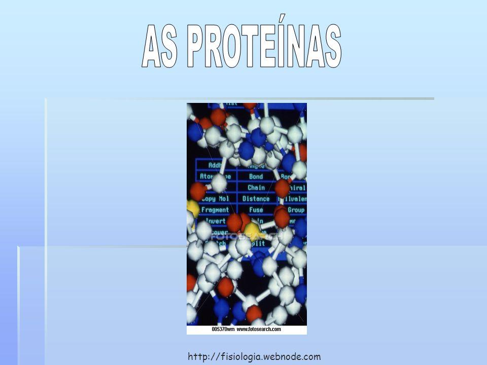 AS PROTEÍNAS http://fisiologia.webnode.com