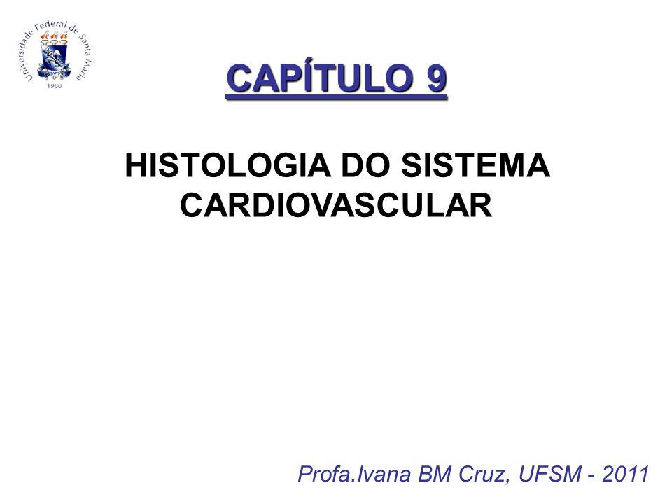 CAPÍTULO 9 HISTOLOGIA DO SISTEMA CARDIOVASCULAR