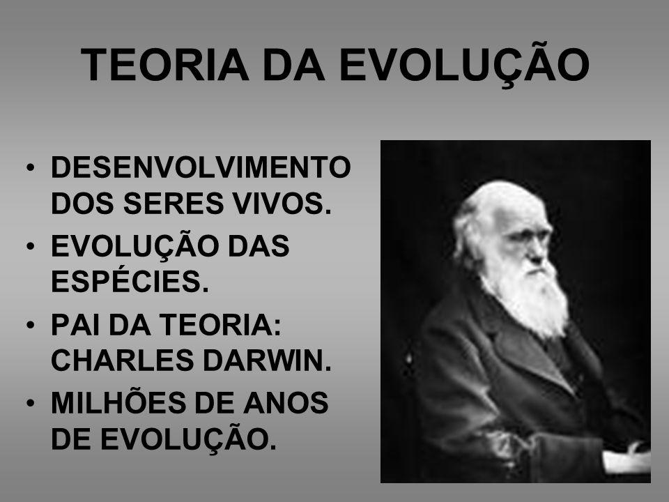 TEORIA DA EVOLUÇÃO DESENVOLVIMENTO DOS SERES VIVOS.