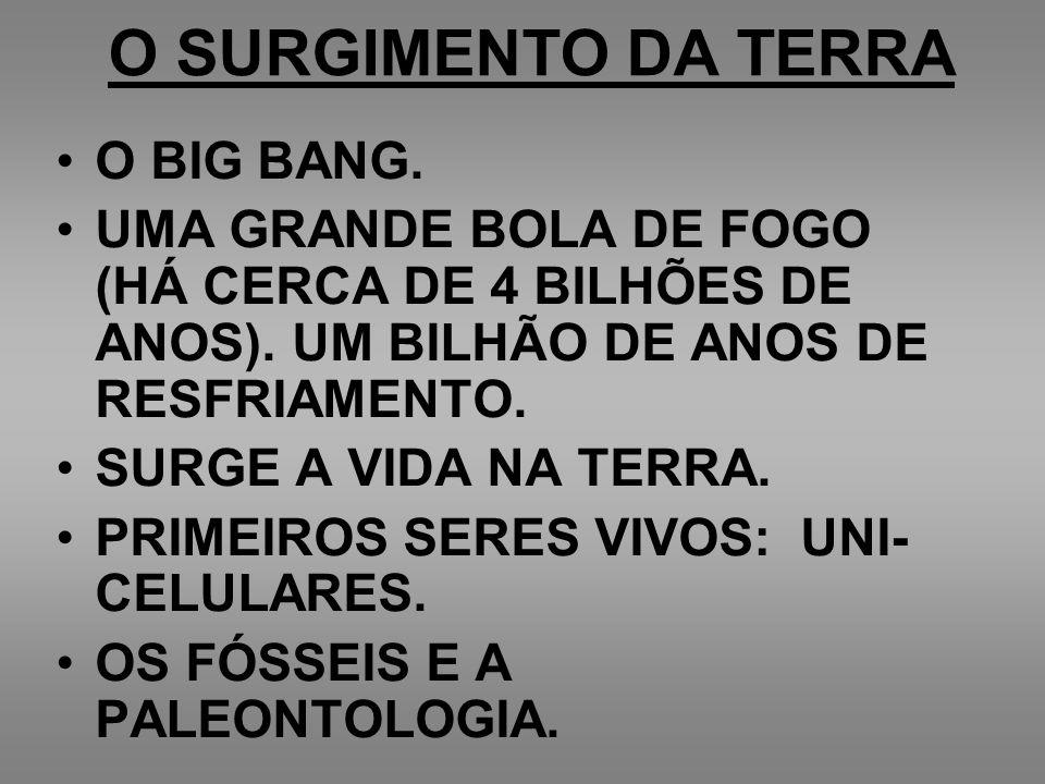 O SURGIMENTO DA TERRA O BIG BANG.