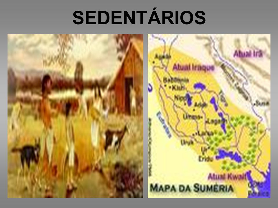 SEDENTÁRIOS