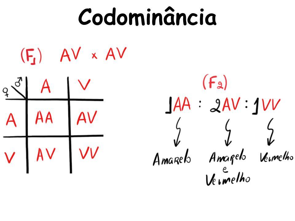 Codominância