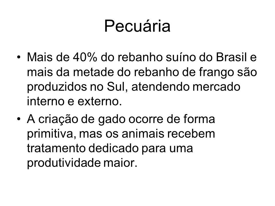 Pecuária Mais de 40% do rebanho suíno do Brasil e mais da metade do rebanho de frango são produzidos no Sul, atendendo mercado interno e externo.