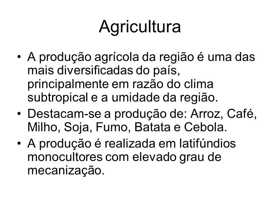 Agricultura A produção agrícola da região é uma das mais diversificadas do país, principalmente em razão do clima subtropical e a umidade da região.