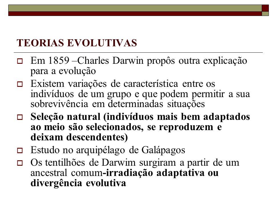 TEORIAS EVOLUTIVAS Em 1859 –Charles Darwin propôs outra explicação para a evolução.