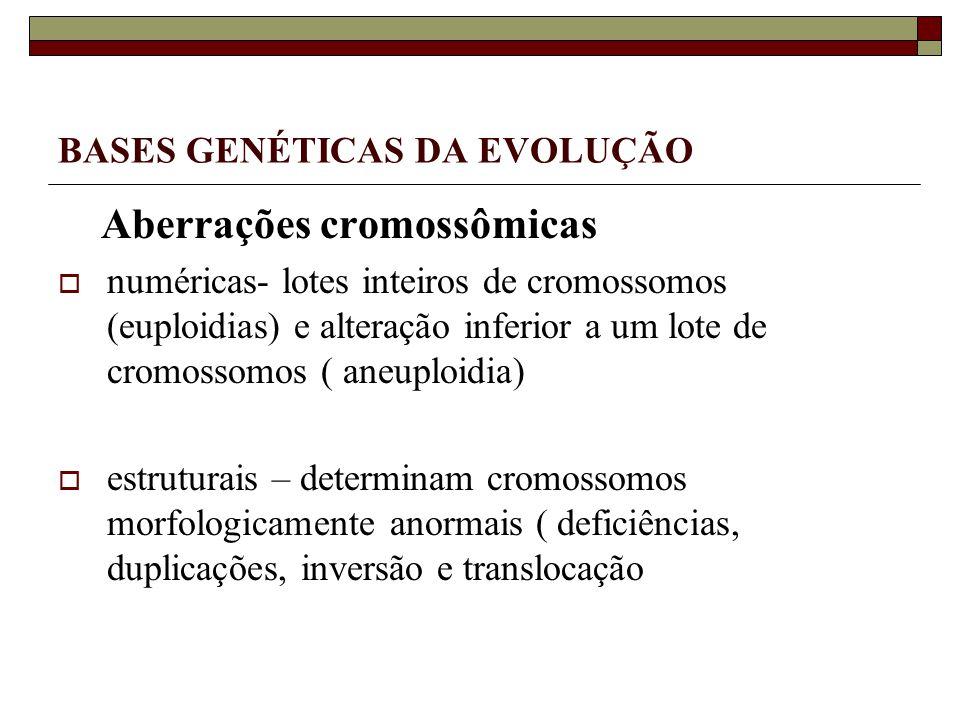 BASES GENÉTICAS DA EVOLUÇÃO