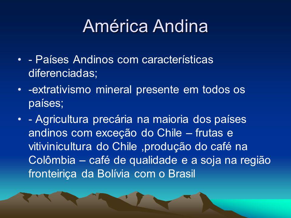América Andina - Países Andinos com características diferenciadas;